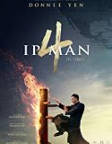 Ip Man 4: The Finale (2020)