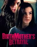 Birthmother's Betrayal (2020)